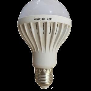 AMPOULE LED SOLAIRE 12V12W